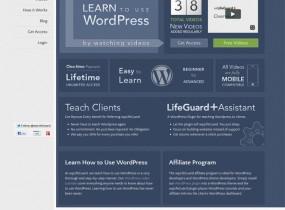 wplifeguard.com