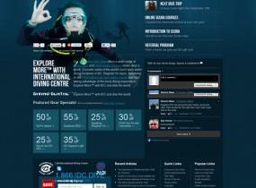 diveidc.com