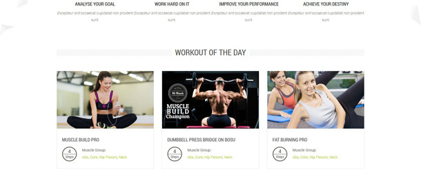 bit.ly/Fitness-Zone-Template